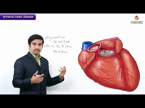 Ischemic Heart Disease / Coronary Heart Disease - Usmle Step 1 : Definition And Coronary Blood Flow