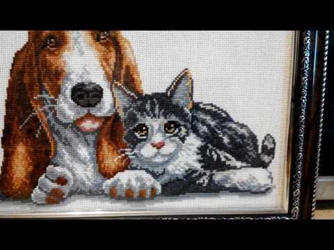 Вышивка крестом, оформленная работа Кот и собака