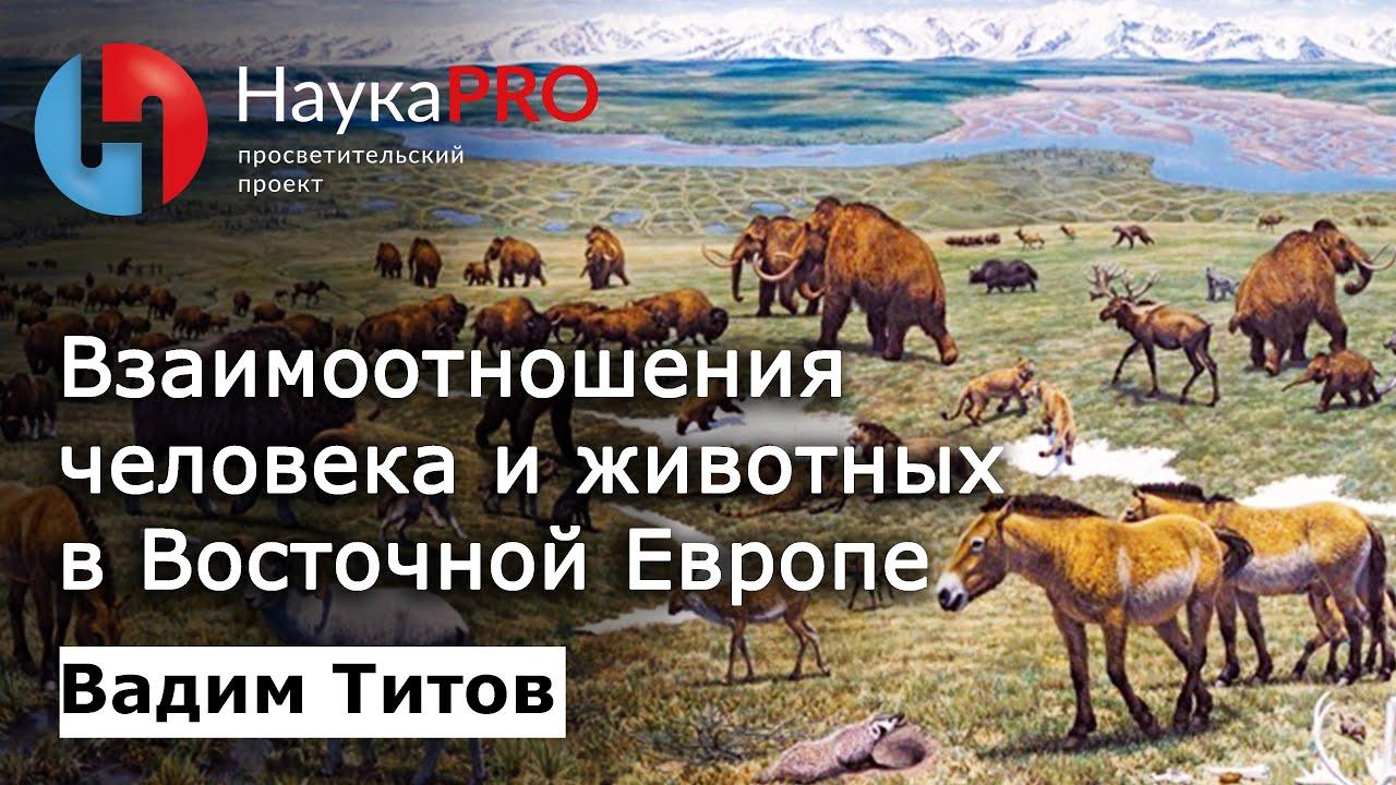 Вадим Титов - Взаимоотношения человека и животных в Восточной Европе: прошлое, настоящее и будущее