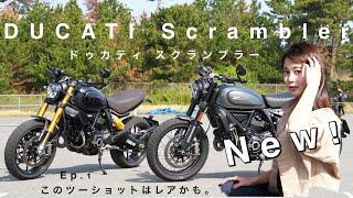 新型 ドゥカティスクランブラーNightshift & 1100SportPRO|DUCATI×バイク女子インプレ