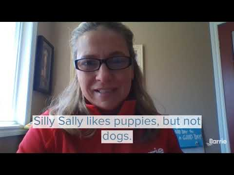 Silly Sally Brain Teaser