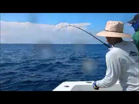 2016 Offshore World Championship | Perth Game Fishing Club Marlin Cup | Pacific Sailfish