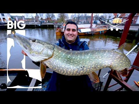Geile Hafen Muttis Ep. 2 - Uli Beyer und Big L angeln auf XXL Hechte mit Kunstködern