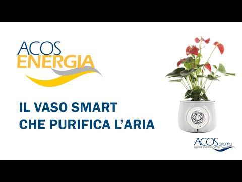Il Vaso che purifica l'aria di ACOS ENERGIA