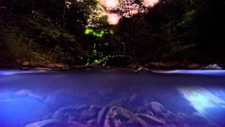 淡路島で見る蛍Vol.4~水中タイムラプス~ Firefly and Stars TimeLapse