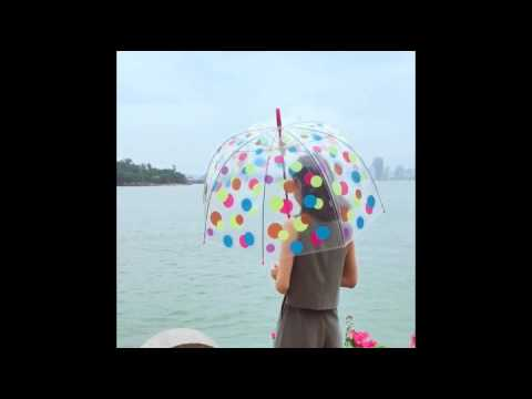 Kung Fu Smith Bubble Clear Umbrella, Colorful polka Dots
