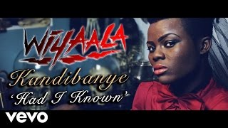 Wiyaala - Kandibanye (Had I Known)
