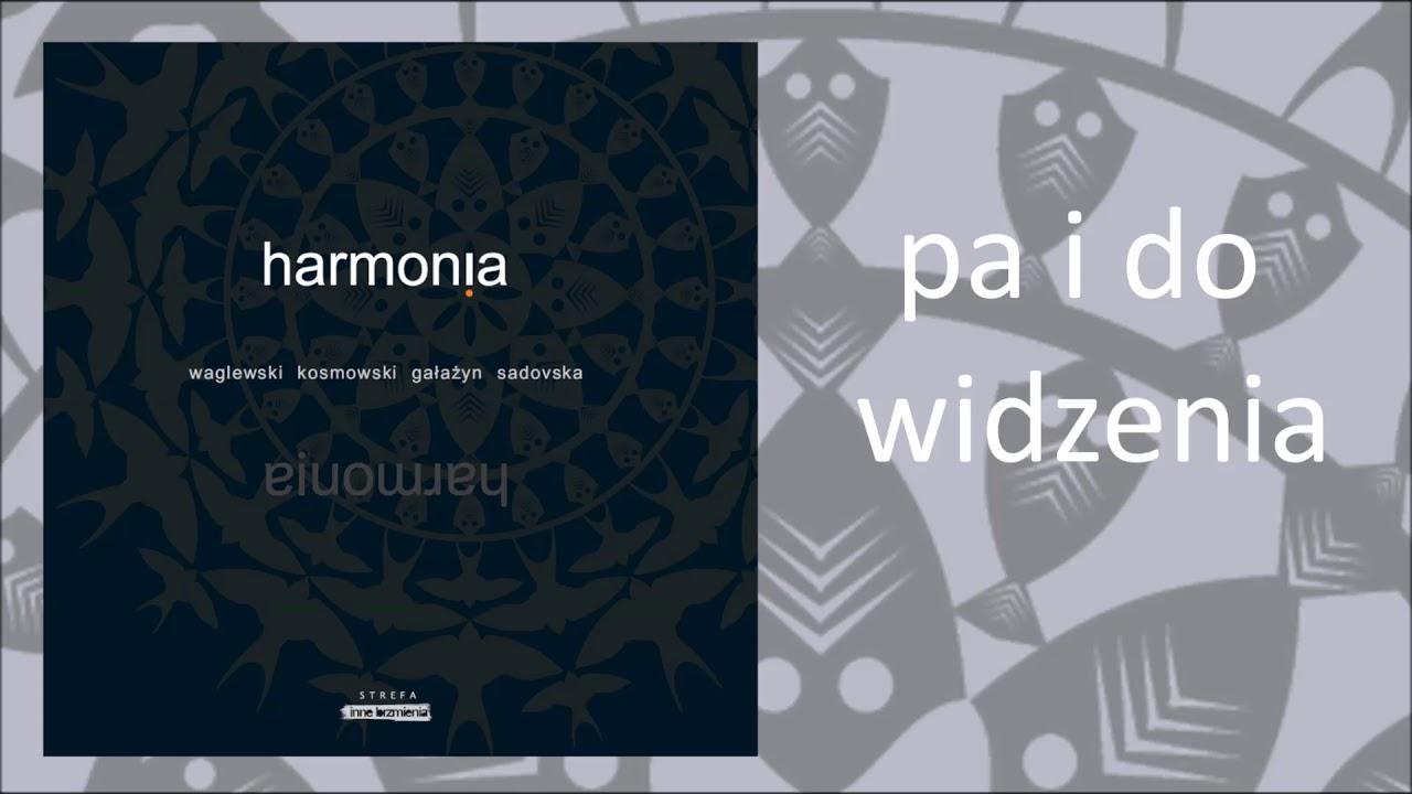 1. Wojciech Waglewski / Ziemowit Kosmowski / Mariana Sadovska – Pa i do widzenia