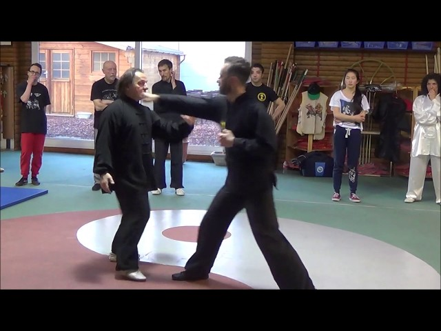 Grandmaster Walter Toch with differents way to selfdefense on his workshop 2015 Belgium