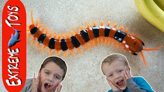 sinister centipede toy insect terror giant bug toy chases ethan and cole