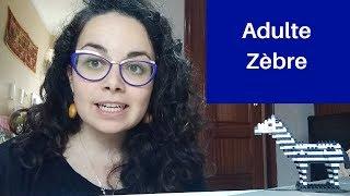 #3 L'adulte zèbre - Caractéristiques d'un profil atypique et explications (Subtitulos ES)
