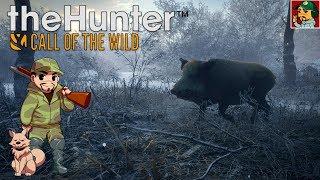 TheHunter: Call of the Wild - Завалим кабанчика