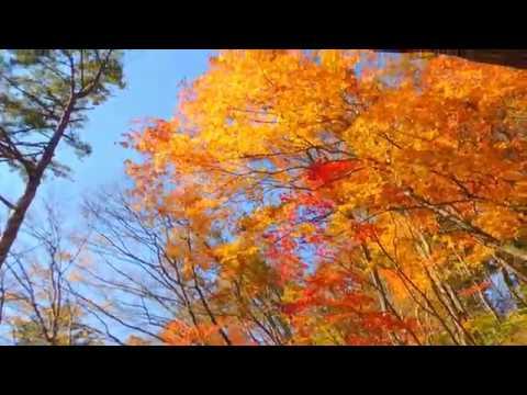 鳴子峽.面白山高原.嚴美溪 - YouTube