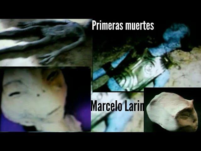 PRIMERAS IMAGENES DE LOS SERES NO HUMANOS DE LA CIUDADELA EXTRATERRESTRE DE PERU Y OTRAS ESPECIES