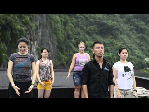 Aphrodite cruise best deal with free food tour in Hanoi.