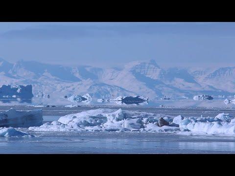 Grónsko 2015 - Ilulissat