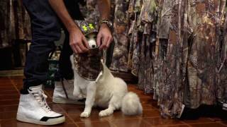 Adventures with Kenny Rodgers the Arctic Fox: Episode  6