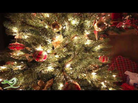 O Holy Night  Instrumental Christmas Music  Christmas Song