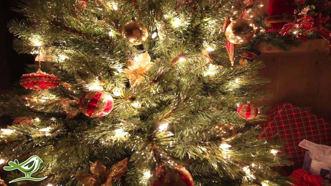 O Holy Night   Instrumental Christmas Music   Christmas Song - YouTube
