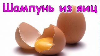 Семья Бровченко. Шампунь из яиц своими руками + кондиционер. (04.17г.)