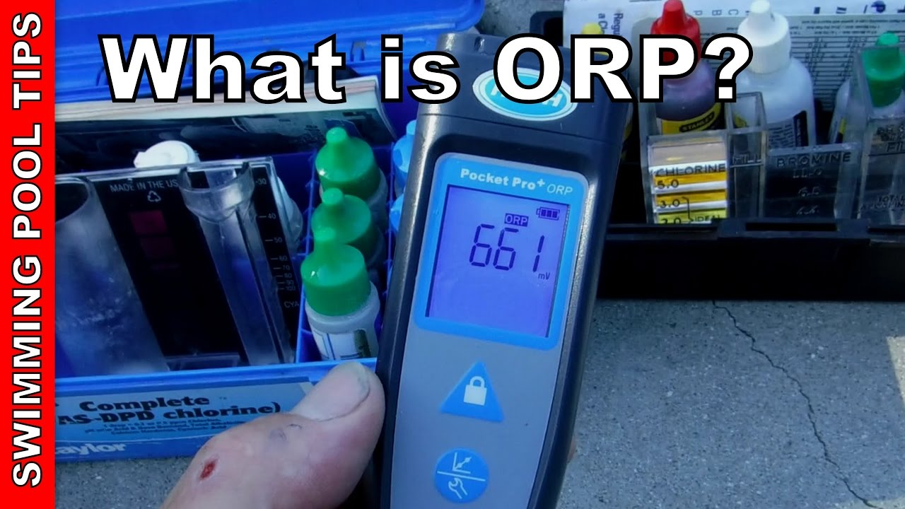 ORP And Your Swimming Pool   Testing The Effectiveness Of The Sanitizer