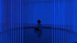 01 Steve Hauschildt - Poinsettia [Editions Mego]