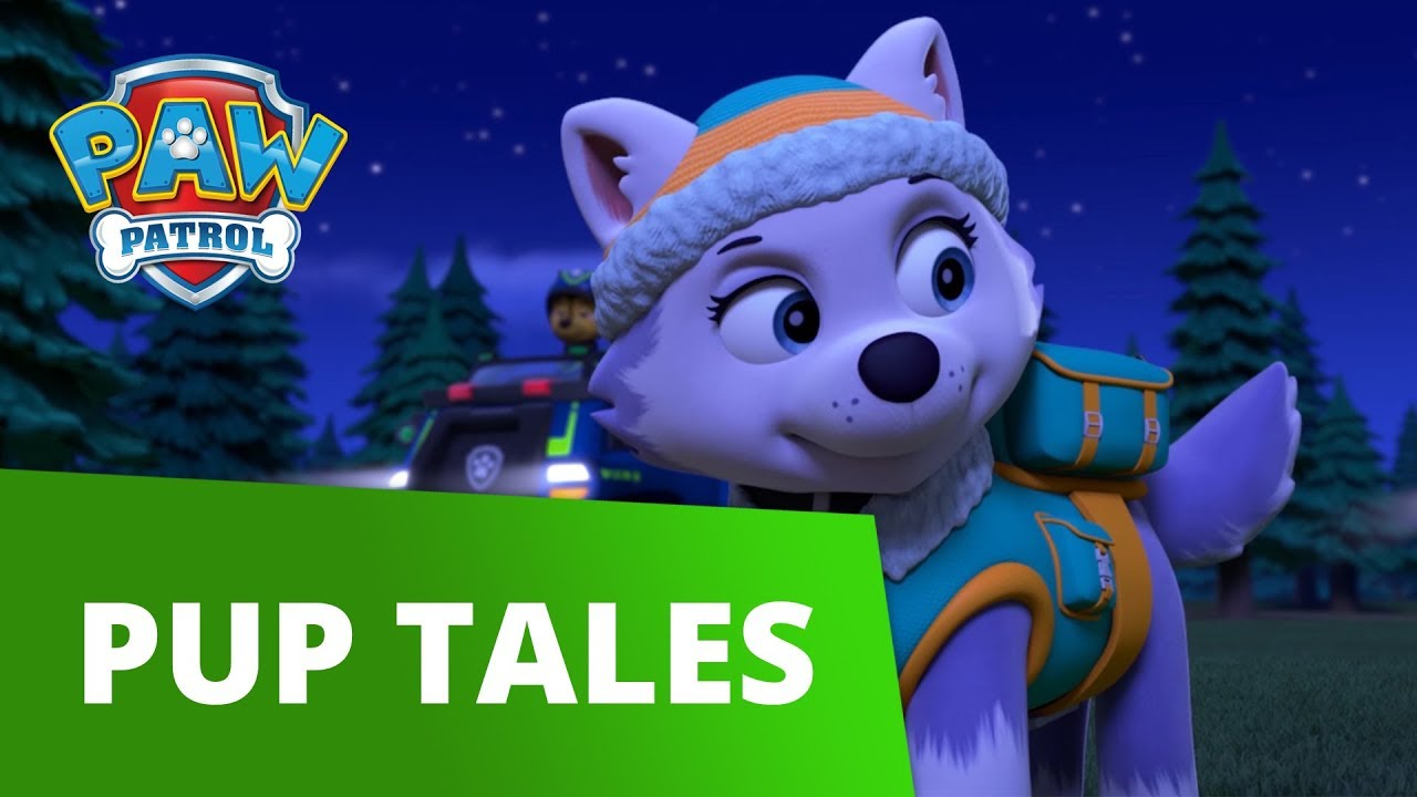 PAW Patrol | Pups Save a City Kitty | PAW Patrol Official & Friends