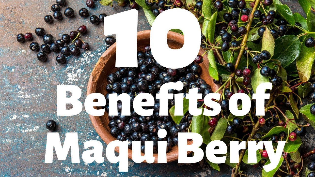 10 Benefits And Uses Of Maqui Berry Youtube