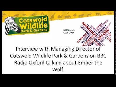 BBC Radio Oxford interview