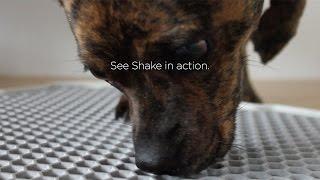Modko - Shake Dog Potty Overview