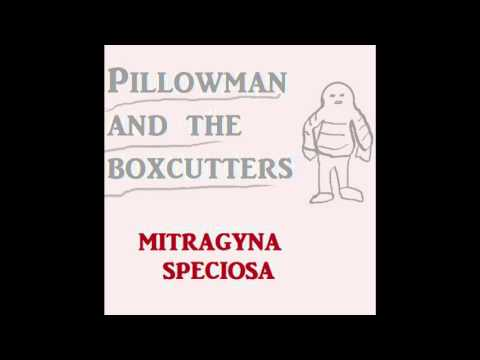 Mitragyna Speciosa by Pillowman and the Boxcutters