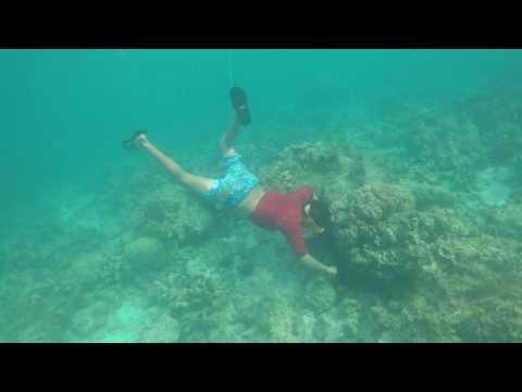 Bohol 2017 05-04@0815 Loon Basdacu Deep Sea Urchin Catching