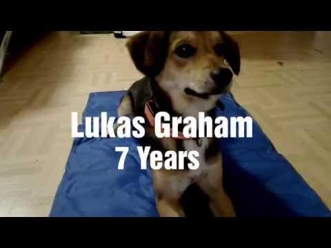 🍬 7 Years - Lukas Graham 🍬 ~ Mv