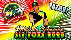 MELÔ DE TELMINHA - SLY FOXX 2020