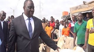 Tabaski 2015: Le ministre Adjoumani à l'abatoire de Port-Bouet