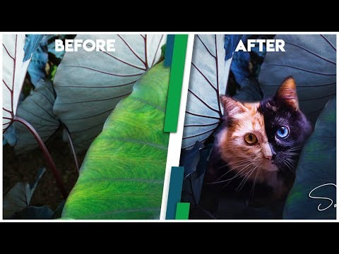 How to make your photos look cinematic (NO NEED PLUGINS) (Manipulation)