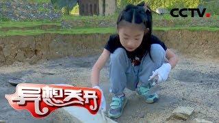 《异想天开》 20191111 海龙囤考古记|CCTV少儿