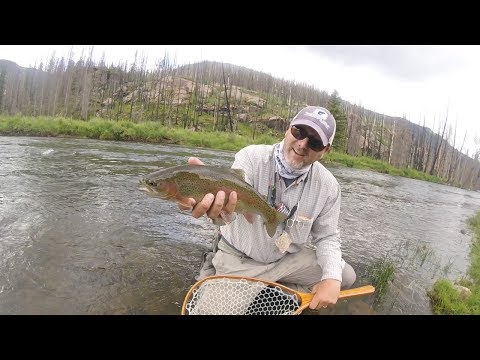 SubtleTakes, Fly Fishing The Rio Grande