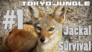 Tokyo Jungle - Jackal Survival Part 1