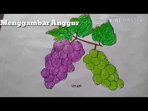 84 Gambar Anggur Dari Kertas Origami Infobaru