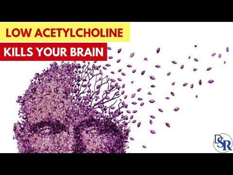 🧠-warning:-low-acetylcholine-=-bad-memory,-alzheimer's,-parkinson's