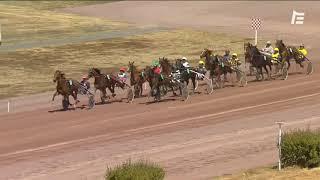 Vidéo de la course PMU PRIX DRYADE DES BOIS