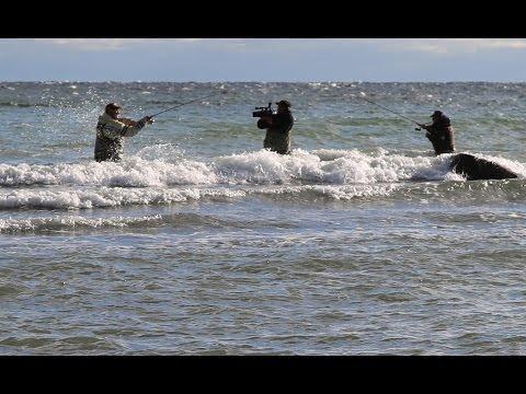 Denmark. Fishing travel. Sea trout. Дания. Рыболовные путешествия. Морская рыбалка.