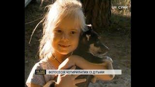 Фотосесія собак із притулку та дітей відбулася у Сумах