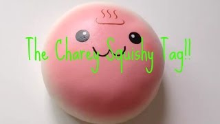 The Charey Squishy Tag!! | HelloJewel