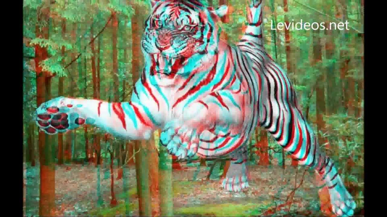 Imagenes 3d con lentes youtube - Para ver fotos ...