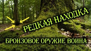 видео леса | Фотоблог