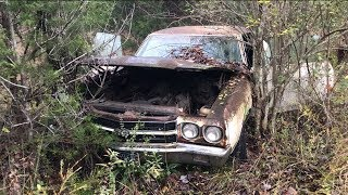 MYSTERY LS6 SS454 1970 CHEVELLE  WAS DRIVEN INTO THE WOODS AND ABANDONED!!!