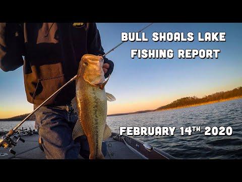 Bull Shoals Lake Fishing Report | Mid-February | Del Colvin
