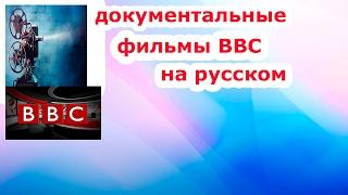 Удивительный фильм bbc Кошки и фараоны.Кошки и фараоны [документатальные фильмы bbc]